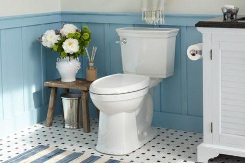 7 adımda tuvalet temizliği