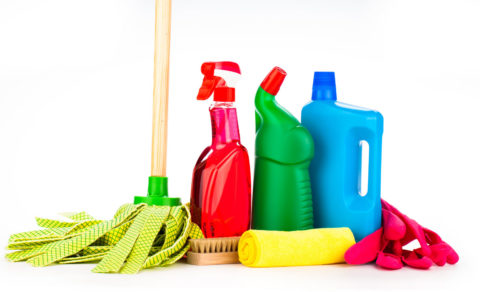 türkiyede ve dünyada temizlik sektörü