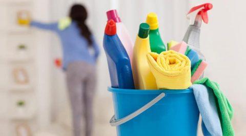 büyükçekmece temizlik firmaları